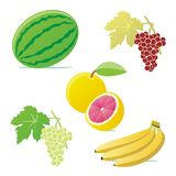 Isolated vector fruits Royalty Free Stock Photography