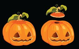 Isolated vector halloween pumpkin Royalty Free Stock Image