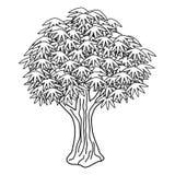 Isolated vector tree Royalty Free Stock Photos