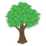 Isolated vector tree Royalty Free Stock Images