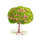 Isolated vector tree. Isolated tree on a white background. Deciduous tree with green leaves and red fruits. Fallen leaves and fruits around the tree. Cartoon Stock Photography