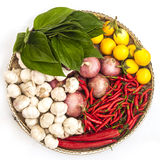 Isolated vegetable plate with eggplant, onion, garlic, pepper and green leafs Royalty Free Stock Photos