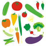 Isolated vegetables. Vector illustration of isolated vegetables Royalty Free Stock Photography