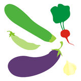 Isolated vegetables. Vector illustration of isolated vegetables Stock Photography