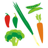 Isolated vegetables. Vector illustration of isolated vegetables Stock Images