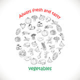 Isolated vegetables in a circle. Vector illustrations Stock Photography