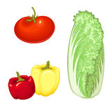 Isolated vegetables Stock Image