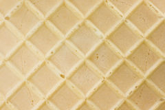 Isolated wafer Stock Photography