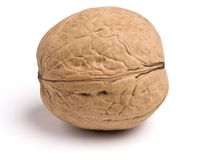 Isolated wallnut. One isolated natural walnut macro Royalty Free Stock Image
