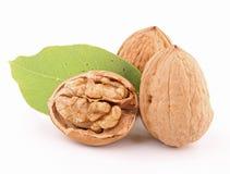 Isolated walnut Royalty Free Stock Photography