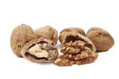 Isolated walnuts Stock Images