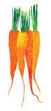 Isolated Watercolor carrots illustration stock illustration