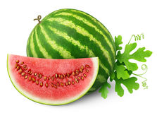 Isolated Watermelon Stock Photography
