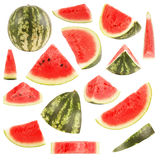 Isolated watermelon collection Royalty Free Stock Images