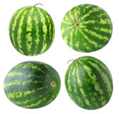 Isolated watermelons collection Stock Photo