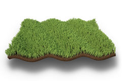 Isolated wavy patch of grass Royalty Free Stock Photography