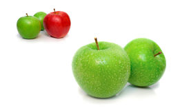 Isolated wet apples Royalty Free Stock Photography