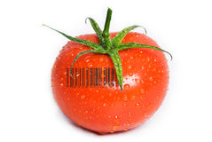 Isolated Wet Tomato. A tomato isolated on white with water drops on it. The green stem is still attached. A generic (not real) barcode printed on the tomato Royalty Free Stock Photos