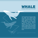 Isolated whale vector illustration. Ocean mammal on the blue background image. Stock Photo