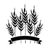 Isolated wheat ear design Royalty Free Stock Images