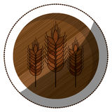 Isolated wheat ear design Royalty Free Stock Photos