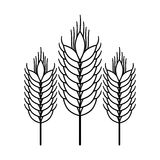 Isolated wheat ear design Stock Photography
