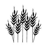 Isolated wheat ear design Stock Image