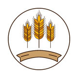Isolated wheat ear design Royalty Free Stock Photography