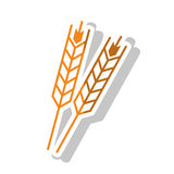 Isolated wheat ear design Stock Photo