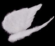 Free Isolated White Angel Wings On Black Stock Image - 845741