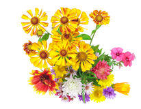 Isolated on white bright colorful bouquet Stock Photography