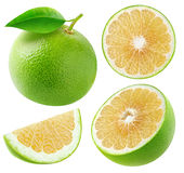 Isolated white grapefruits collection Royalty Free Stock Photo