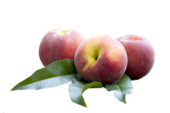 Isolated on white peaches Stock Photography
