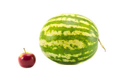 Isolated on white water melon and red apple Royalty Free Stock Image