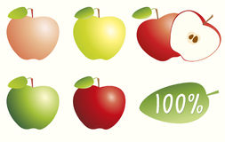 Isolated whole and cut red, yellow and green color apple with labeled leaf and 100%. Pure life concept Stock Image