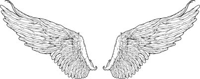 Isolated wings graphic style Royalty Free Stock Photos