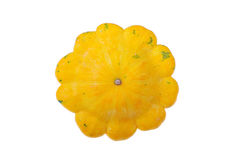 Isolated Winter Squash. Isolated yellow winter squash on white studio background Royalty Free Stock Images