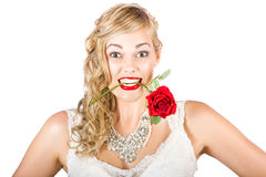 Isolated Woman Holding Rose During Valentines Day Stock Image