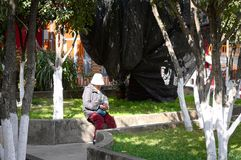 Isolated woman with white hat is sitting in the park stock images