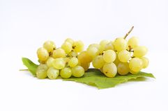 Isolated yellow grapes. Grape cluster isolated on white background Stock Images