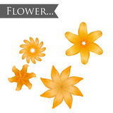 Isolated yellow lilia flower. Vector element for your design stock illustration