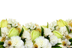Isolated yellow roses and flowers. Isolated flowers isolated on white background stock photo