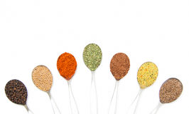 Isolates spice. Seven isolated spoon with different spice Royalty Free Stock Images