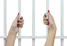 Isolates woman fingers cage. Isolates of woman fingers with red nails holding grip on the bars of the cage stock photo