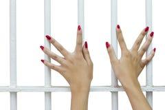 Isolati delle dita della donna con le unghie rosse. Fotografia Stock