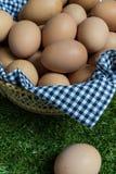 Isolatieconcept: één ei ligt gescheiden van de groep b.v. Royalty-vrije Stock Foto's