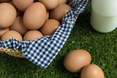 Isolatieconcept: Twee eieren ligt gescheiden van de groep e Stock Foto