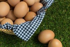 Isolatieconcept: Twee eieren ligt gescheiden van de groep e Stock Foto's