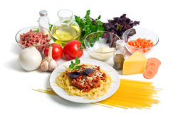 Isolationsschlauch Bewohner von Bolognese mit Käse lizenzfreies stockfoto