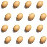Isolato bianco del modello senza cuciture delle uova Fotografie Stock